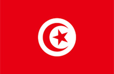 اسعار الذهب في تونس اليوم