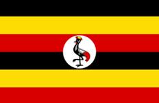 اسعار الذهب في أوغندا اليوم